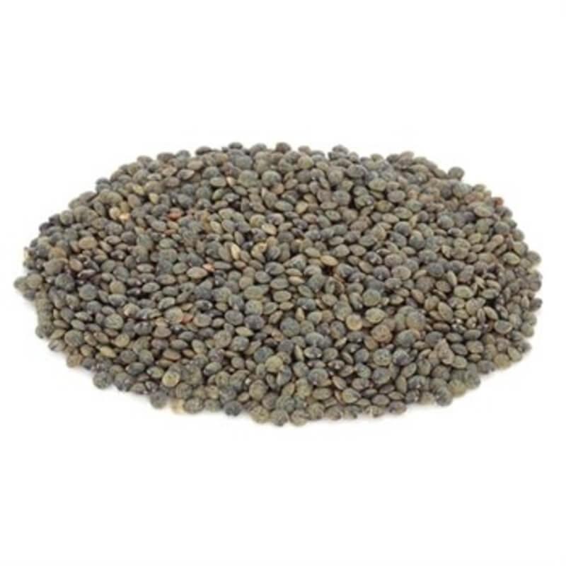 lentilles-du-puy