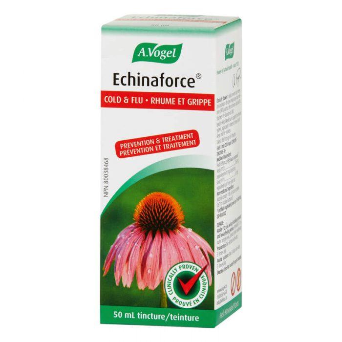 Echinaforce liquide