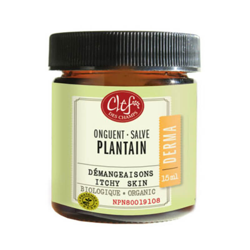 plantain-onguent